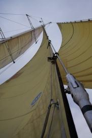 ocean sailing march 2010 168
